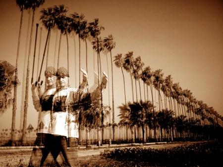 pb-fowley-palms-4-copy.jpg